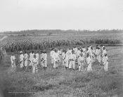 Juvenile convicts, 1903.